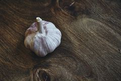 Head of garlic Royalty Free Stock Photo