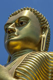 The head of the giant 30 metre high golden statue of Buddha at the Golden Temple in Dambulla in Sri Lanka. Stock Images