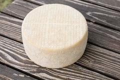 Head of goat cheese Stock Photos