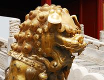 Head of gold lion Royalty Free Stock Images