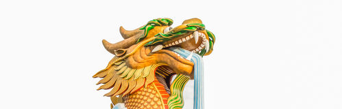 Head of golden dragon spout water Royalty Free Stock Photo