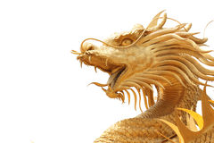 Head Golden dragon statue. Royalty Free Stock Photos