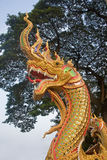 Head of golden serpent is a common decorative element Royalty Free Stock Photography