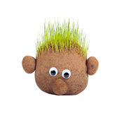 Head with grass Stock Photos