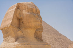Head of  the great Sphinx. Royalty Free Stock Photo
