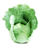 Head of green cabbage Royalty Free Stock Photo