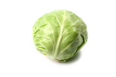 Head of green cabbage Royalty Free Stock Image
