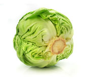 Head of green cabbage vegetable isolated Royalty Free Stock Image