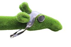 Head of a green camel in a helmet. The head of a forward looking green camel in a helmet and goggles royalty free stock photos