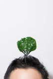 Head growing trees. Full of ideas stock image