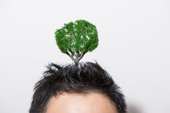 Head growing trees. Full of ideas stock photos