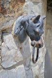head hästknackare för dörr Arkivbilder