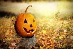 Head halloween pumpa på stubbe i skog Arkivbilder