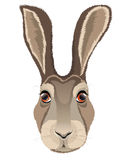 The head of a hare. Logo, emblem, mascot. Vector illustration Stock Images