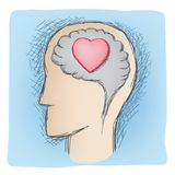 Head and heart connected organs Royalty Free Stock Photos