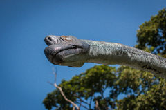 Head herbivorous dinosaurs Royalty Free Stock Images