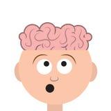 Head hjärnor Royaltyfri Fotografi