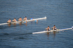 Head of the Hooch Rowing Regatta Stock Image