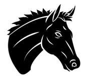 Head Horse Royalty Free Stock Image