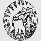 Head of horse. Sketch doodle vector illustration Royalty Free Stock Image