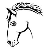 Head of horse Royalty Free Stock Image