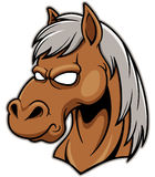 Head Horse Stock Photos