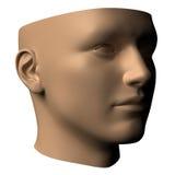 head human för hjärna Royaltyfri Bild