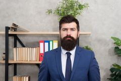 Head of human resources department. Man bearded serious office background. Provide consultation to management on stock photos