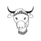 Head indian sacred cow culture Royalty Free Stock Photos