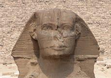 head khafrepyramidsphinx royaltyfri bild