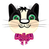 Head kitty with bow Stock Image