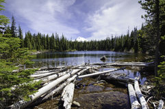 Head Lake With Mount Jefferson, Western Oregon Royalty Free Stock Photos