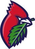 Head Leaf Isolated cardinal rétro Image libre de droits