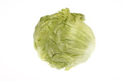 Head of lettuce Royalty Free Stock Photos