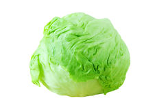 Head Lettuce royalty free stock photos