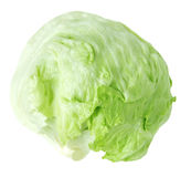 Head lettuce Stock Photos