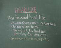 Head Lice information on chalkboard Royalty Free Stock Photos