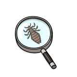 Head lice under magnifying glass. Illustration Royalty Free Stock Photos