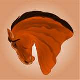 The head of light brown stallion horse vector Stock Photography