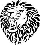 head lion Fotografering för Bildbyråer