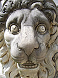 head lion Royaltyfri Fotografi