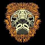 head lion Arkivbilder