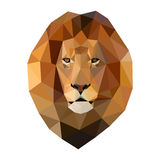 head of lion composed of triangles on white background. royalty free illustration
