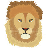 The head of a lion, a lion. Flat design, vector illustration, vector Stock Images