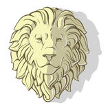 Head of lion shadow Royalty Free Stock Photography