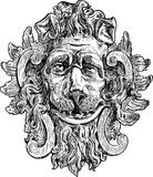Head a lion Stock Photography