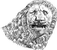 Head of lion. Vector drawing of a fragment of ancient roman sculpture of lion Stock Images