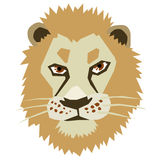 Head of lion Stock Photography