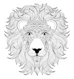 Head of  lion Royalty Free Stock Photo