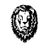 Head of Lion. On white background Stock Images